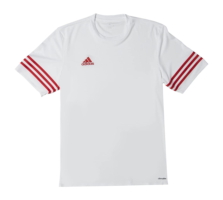 1e67d16c3ce adidas Entrada 14 - Camiseta de equipación de fútbol  Amazon.es  Zapatos y  complementos