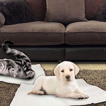 JohnJohnsen Camas Manta Gato del Perro del Auto Calefacción Cama para Mascotas térmica Manta Lavable Sin eléctrico Gatito del Perrito Super Suave Manta Mat ...