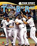 img - for The Tampa Bay Rays (Team Spirit (Norwood)) by Professor of Civil Engineering and Director of the Centre for Infrastructure Performance and Reliability Mark Stewart (2012-01-15) book / textbook / text book