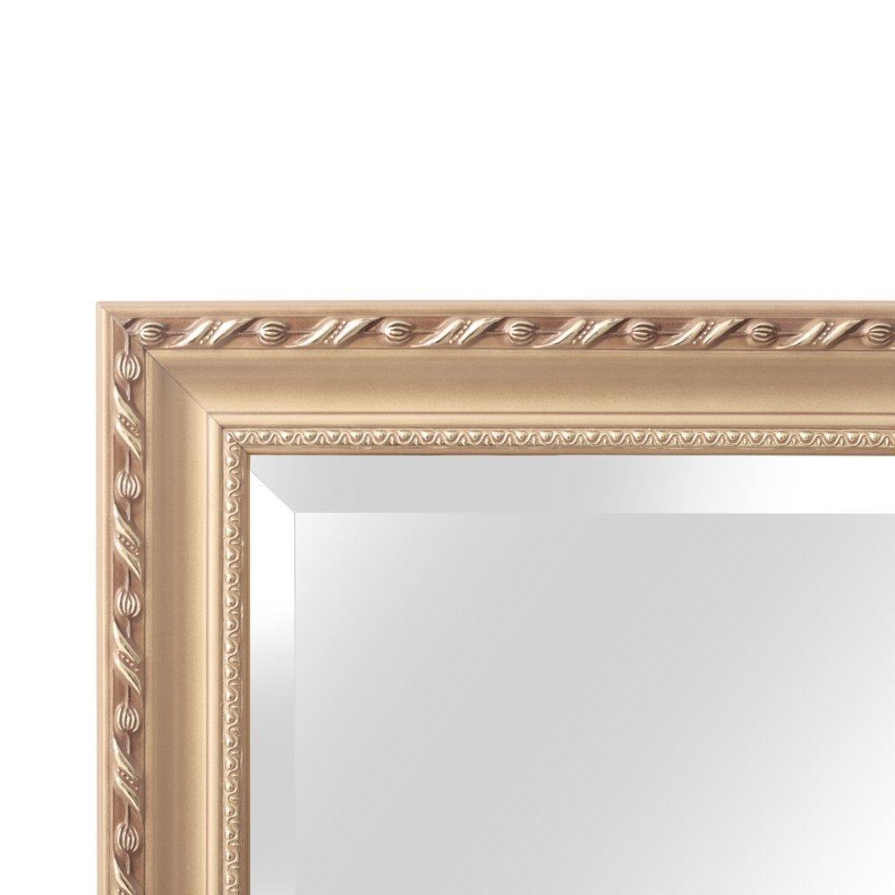 Hans & Alice 65''x24'' Rectangular Bathroom Full Length Floor Mirror Standing or Hanging(Champagne) by Hans & Alice