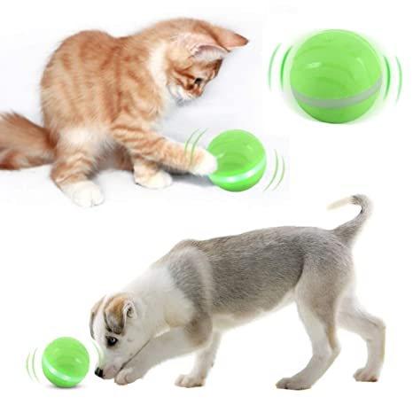 Amazon.com: Blinkbrione Juguetes para gatos y perros, bolas ...