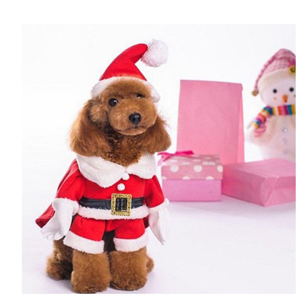 Amazon.com: Disfraz de Papá Noel con sombrero para perro ...