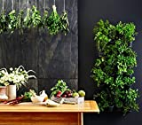 Expandable Green Wall w/ Built-in micro dripper (4)