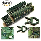 vine tomato - Garden Plant Support Plant Staking Clips for Vines Flower Clips for Gardening Supporting Stems,Vines,Stalks Flower Beds to Grow Upright (80PCS)