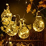 Homeleo Battery Operated Hanging Lights, LED Clear Bulb Copper String Lights, 10ft 10 Bulbs Warm White Globe LED Wire Hanging Light for Christmas Halloween Wedding Party Indoor Outdoor Decor