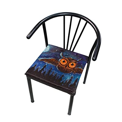 """Bardic HNTGHX Outdoor/Indoor Chair Cushion Starry Night Animal Owl Square Memory Foam Seat Pads Cushion for Patio Dining, 16"""" x 16"""": Home & Kitchen"""