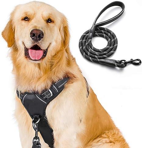 Arnes perro anti tirones