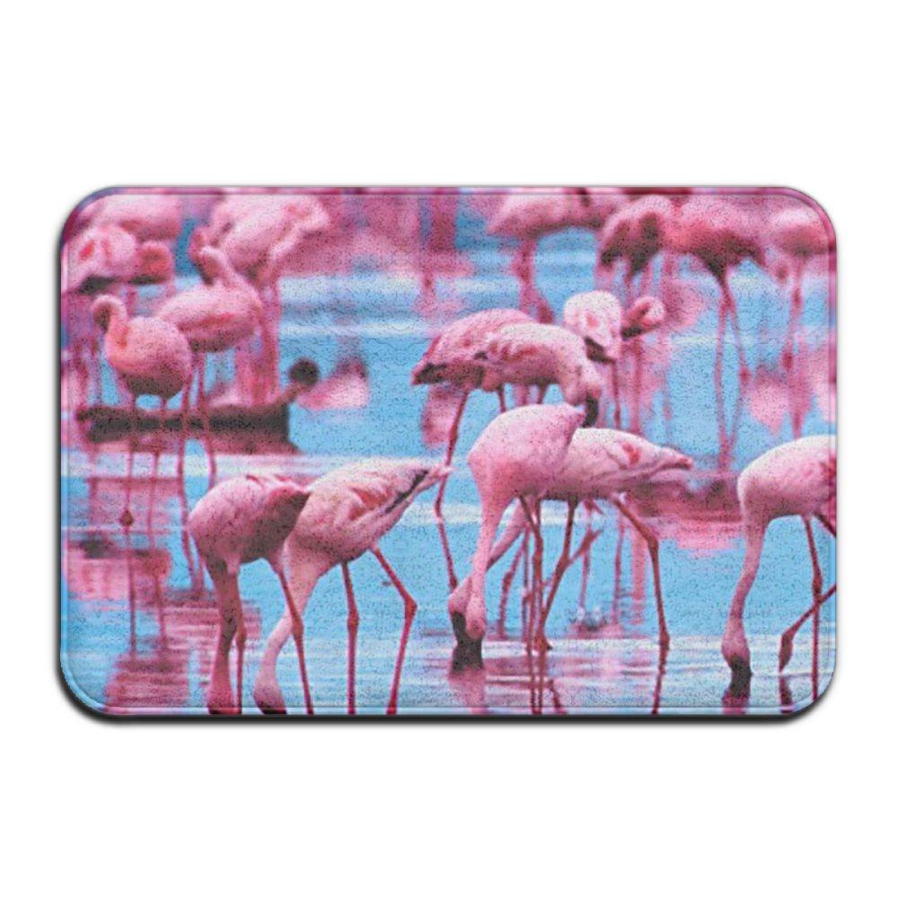 BINGO BAG Pink Blue Flamingos Indoor Outdoor Entrance Printed Rug Floor Mats Shoe Scraper Doormat For Bathroom, Kitchen, Balcony, Etc 16 X 24 Inch