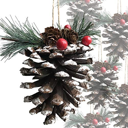 BANBERRY DESIGNS Christmas Pinecones - Set of 12 Large Snow Covered Pine Cone with Berries and Greenery