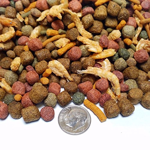 Aquatic Foods Inc. Gourmet Blend - Ultimate Large Fish Gourmet Blend. GB-470 16oz/1-lb