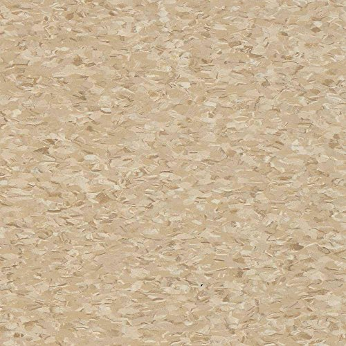 Civic Square VCT 12 in. x 12 in. Stone Tan Commercial Vinyl Tiles (45 sq. ft. / ()