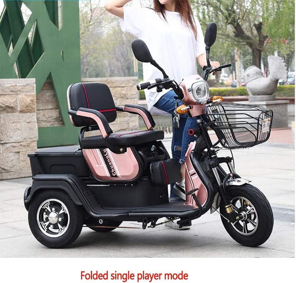 AA100 Triciclo eléctrico Scooter Viejo Ocio al Aire Libre Ajuste Simple y Doble Sentado/batería de Litio 48V20A / 800W / Carga 300KG