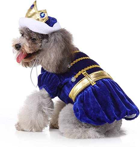 Disfraz de príncipe para perro, disfraz de perro para perro ...