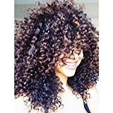 Curly Hair Wigs For Black Women,Natural Hair Wigs For Black Women,Curly Wig, Kinky Curly Afro Wigs Human Hair Lace Front Synthetic Wigs With Neat Bangs 20'' 300g(Brown) (1026)