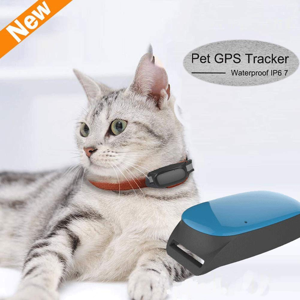 Amazon.com: Rastreador de mascotas, rastreador GPS ...