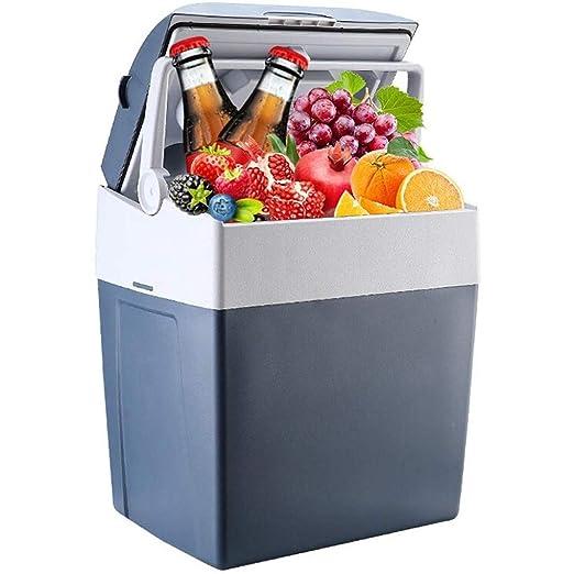 MUTANG Mini nevera, refrigerador del coche de refrigeración y ...