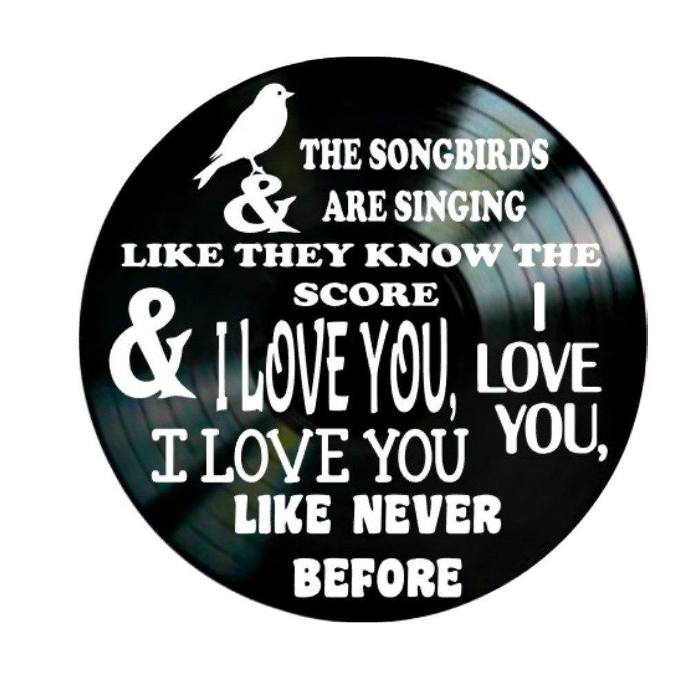 Fleetwood Mac Songbird song lyrics on a Vinyl Record Album Wall Decor