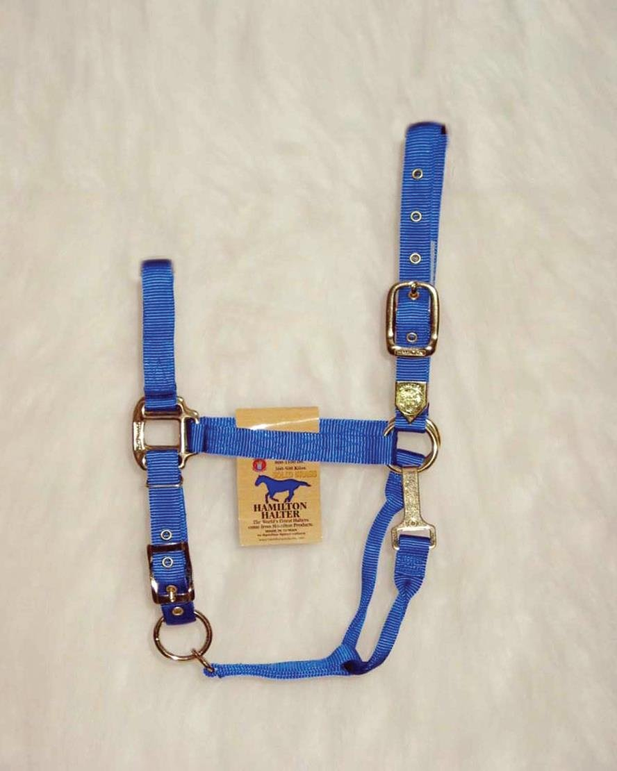 ADJUSTABLE CHIN HORSE HALTER WITH SNAP - AVERAGE - Blue