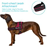 SlowTon No Pull Dog Vest Harness Adjustable Neck Chest Strap Breathable Padded Vest (L, Dual D-Ring - Burgundy)