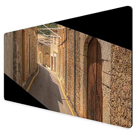 Amazon.com: Mouse Pad Rectangle Mouse Pad Alley Caimari ...