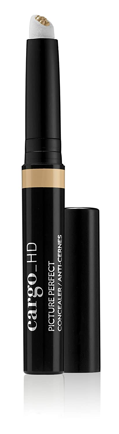 Cargo Cosmetics Cargohd Picture Perfect Concealer 3w 25