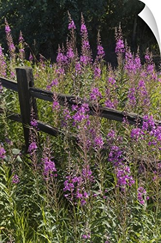 wooden split rail fence - 9