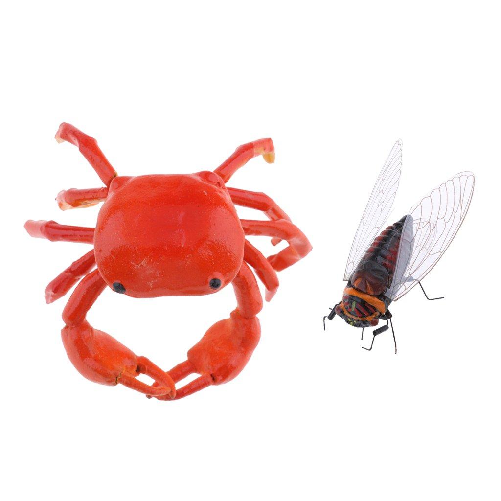 2Piece Realistic Animal Cicada /& Crab Pot Hanger Fridge Magnet Garden Decor