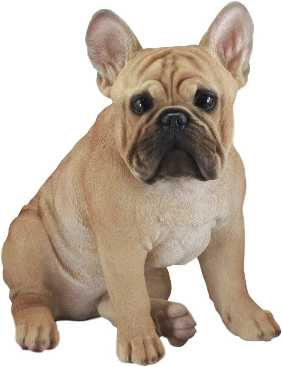 Ebros Large Lifelike Realistic French Bulldog Statue with Glass Eyes 15.75 Tall Frenchie Figurine