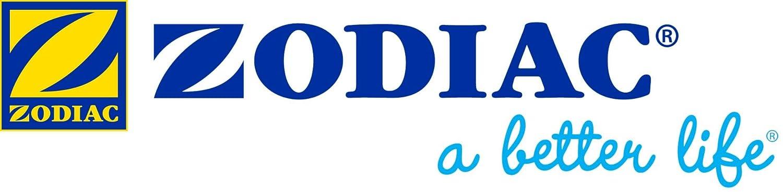 Zodiac Spa Wand aspirador de agua manual para spas y piscinas: Amazon.es: Hogar