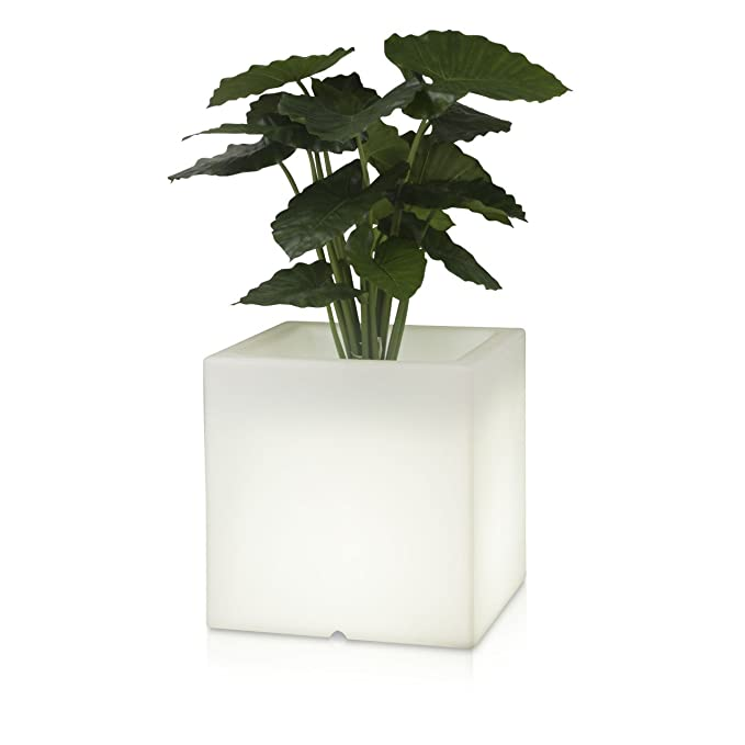 Pflanzkübel Blumenkübel CUBO LUZ 50 Kunststoff, 50x50x50 cm ...