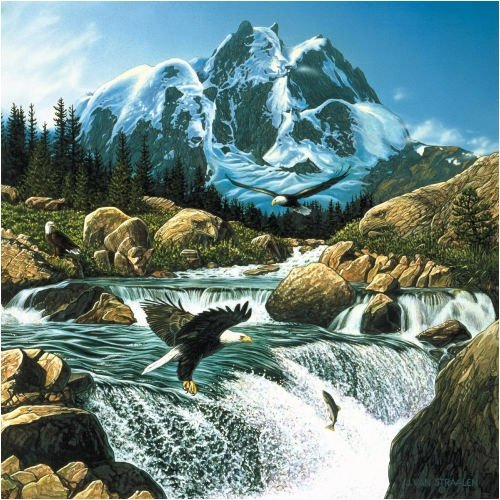Fishing at Eagle Rocks Jigsaw Puzzle 1000 Piece by SunsOut