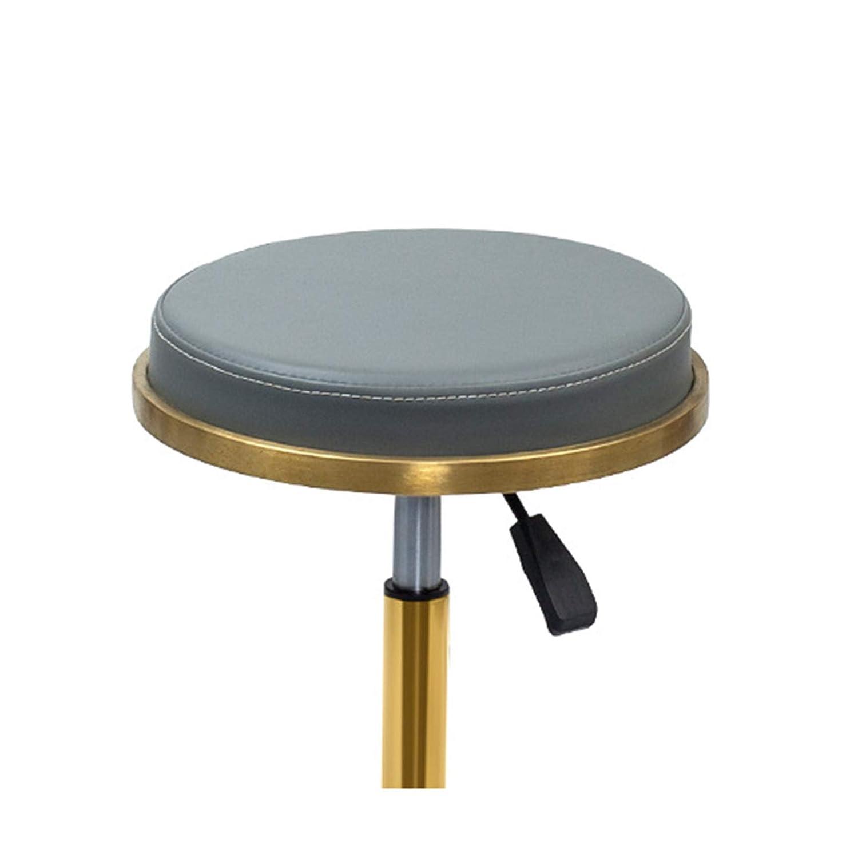 WANGXNCase sadelpall, tandmobil stol sadel,hydraulisk sadel rullande justerbar, pall för skönhetssalong massage tandklinik hem kontor användning Silver1