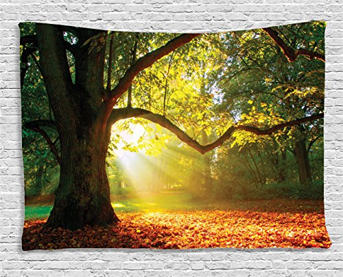 Ambesonne Leaves Tapestry Forest Decor, Majestic Mighty Oak Tree with Largely Broader Sun Beams Rays Nature, Wall Hanging for Bedroom Living Room Dorm, 80 W X 60 L, Green Light Yellow and Orange (Oak Mighty Tree)