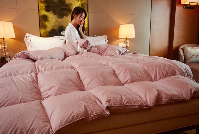 キルトホテルホーム寝具秋コットンサテンデコートホワイトガチョウケーシングウォッシャブルホームソフトウィンターシックウォーム B07K59XWHS Pink X-Large