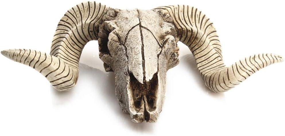 TOOGOO Creativo Cabeza de Cr/áneo de Oveja de Resina Cabeza Colgante de Pared 3D Animal Longhorn Escultura Figuras Artesan/ías Cuernos Decoraci/ón para el Hogar Adornos