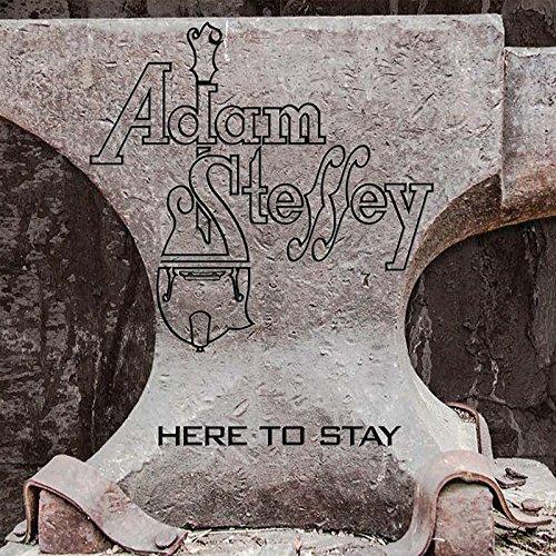 Here to Stay (Mandolin Adam Steffey)
