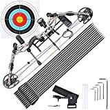 AW Pro Compound Right Hand Bow Kit w/ 12pcs Carbon Arrow Adjustable 20 to 70lbs Archery Set Camo