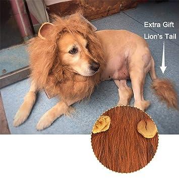 XISTORE Peluca de león para Mascota, Disfraz de Transfiguración con Cola, tamaño Grande,