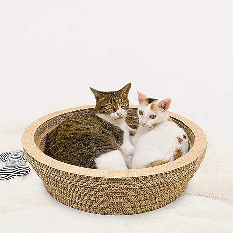 Funihut - Gato rascador para Gatos y Camas, Cuenco Redondo, cómodo ...
