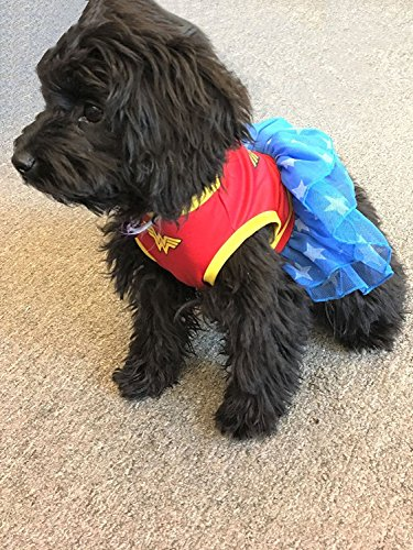 DC Comics Wonder Woman Dog Costume with Blue Tulle Skirt with White Stars, Small   Best Superhero Dog Costume For All Small Dogs -