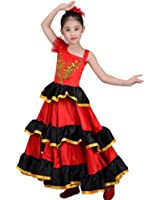 Amazon.com: La Senorita Spanish Flamenco Dress Fancy Dress ...