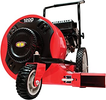 Southland SWB163150E Walk-Behind Leaf Blower
