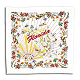 """Beautiful retro design (from an original vintage design) with a smiling sun, done in reds and yellows on white. 100% cotton flour sack and 22"""" square."""