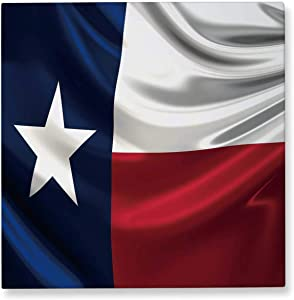 Pummelouty Flag of Texas,Wall Art for Office Couple Gifts 12x12