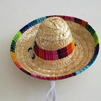 ZZM Sombrero de Perros Sombrero, Mini Sombrero de Perros ...