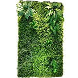 Ping Bu Qing Yun Background Wall - Artificial Plant Wall, Wedding Flower Wall, Three-Dimensional Screen Roof Wall Decoration (4 Styles to Choose from) Flower Wall Decoration (Color : 01)