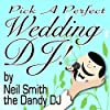 Pick a Perfect Wedding DJ