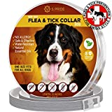 S PRIDE Dog Collar Pet Essential Oil Pest Control Collars Prevention for Dogs 8 Months Protection & Control Collar with Natural Plant Extracts One Size Fits ALL
