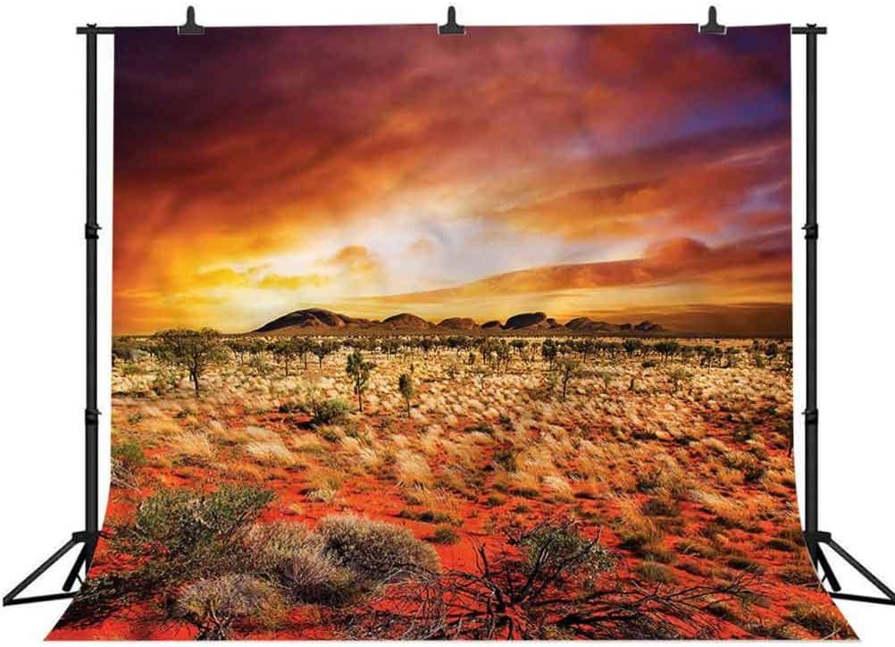 6x6FT Vinyl Wall Photography Backdrop,Desert,Sunset Central Australia Photo Backdrop Baby Newborn Photo Studio Props