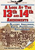 A Look at the Thirteenth and Fourteenth Amendments, John Richard Conway, 1598450700